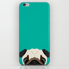 Peeking Pug iPhone & iPod Skin