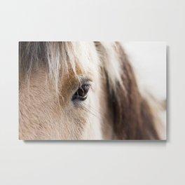 Horse Vision Metal Print