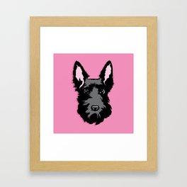 Black Scottie Dog on Pink Background Framed Art Print