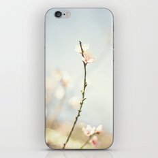 jutting bloom iPhone & iPod Skin
