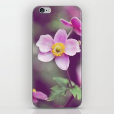 Believe in me iPhone & iPod Skin