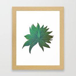 Australica Agave Framed Art Print