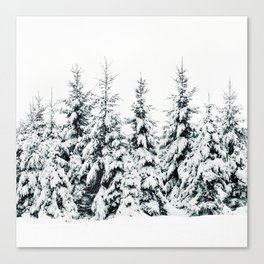 Snow Porn Canvas Print