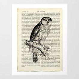 Book Art Page Owl Black & White Art Print