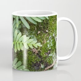 Moss and Fern Coffee Mug
