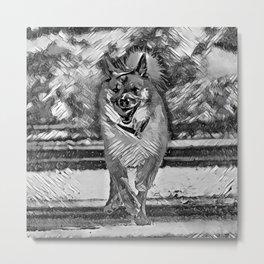 AnimalArtBW_IcelandicSheepdog_20170602_by_JAMColorsSpecial Metal Print