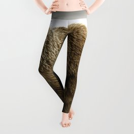 Stunning Adult Grizzly Bear Mother On Adventure With Super Cute Little Cubs Ultra HD Leggings