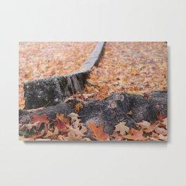 Tree Root Metal Print