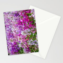 The Lost Gardens of Heligan - The Walled Garden Stationery Cards