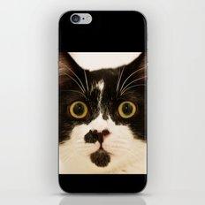 Pussy cat, pussy cat iPhone & iPod Skin