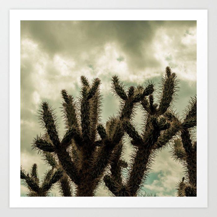 Cactus_0009 Art Print