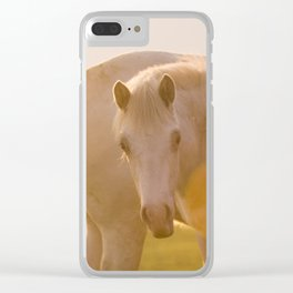bathing in the sunlight Clear iPhone Case
