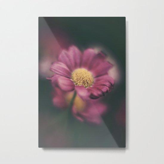 Daisy' Metal Print