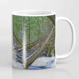 The Trail to the Falls - Nature Photo HDR Coffee Mug