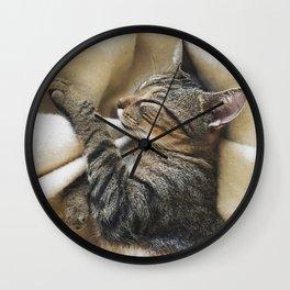 It's A Cat's Life Wall Clock