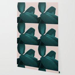 Ficus Elastica #4 #art #society6 Wallpaper