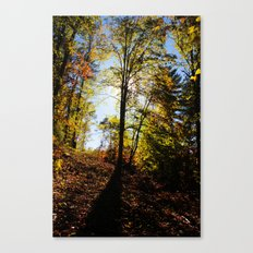 Spiritual Thoughts Canvas Print