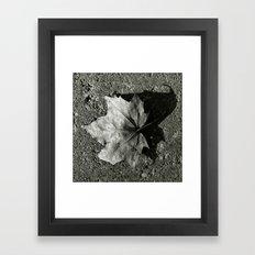 'Maple Leaf' Framed Art Print