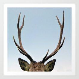 Stag antlers Art Print