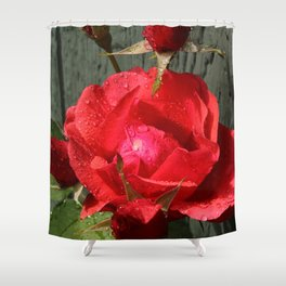 Budding and Bloom Shower Curtain