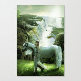 A Long Journey Home Canvas Print