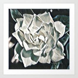 White Azalea Flower with Green Leaves Art Print