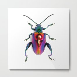 Lovely Lady Frog-legs Metal Print