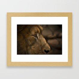 The Lion King Framed Art Print