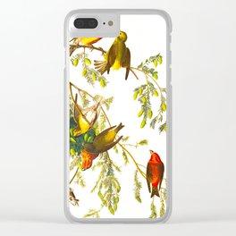 American Crossbill Vintage Bird Illustration Clear iPhone Case