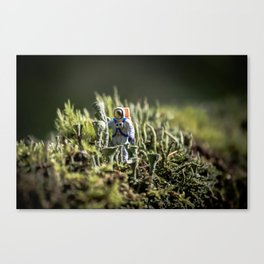 Home Planet Photo Series #1 Canvas Print