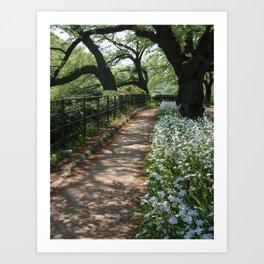 cherry tree, iris ,path Art Print