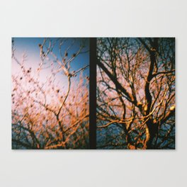 Trees Dyptich Canvas Print