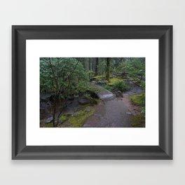 Zen Bridge Framed Art Print