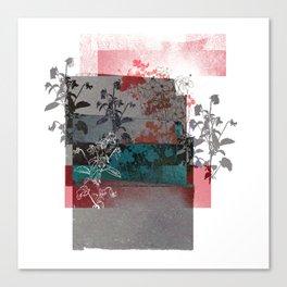 Anemony Canvas Print