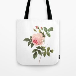 Vintage Pink Rose [04] Tote Bag