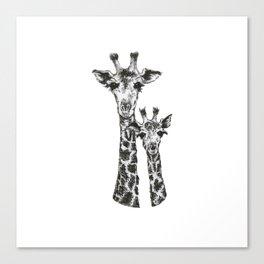 Giraffes by annmariescr Canvas Print