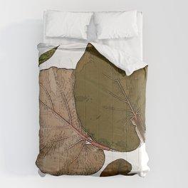 Vintage Fall Leaves II Comforters