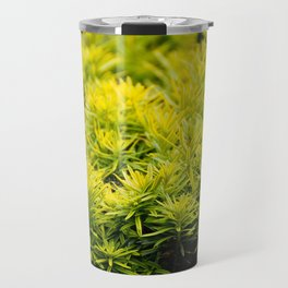 Taxus baccata Yew new shoots Travel Mug