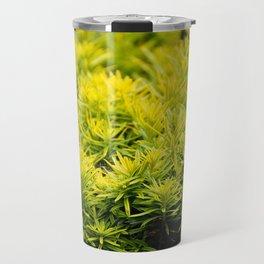 Taxus baccata Yew new shoots Travel Mug