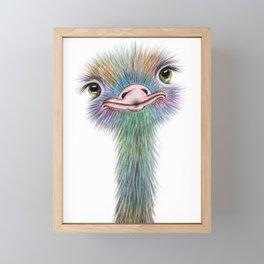 Ostrich colorful bird Framed Mini Art Print