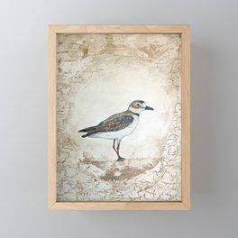Plover Framed Mini Art Print