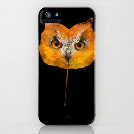 Autumn Owl-1 iPhone Case