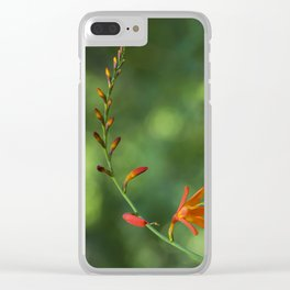 The beauty of a single orange flower Clear iPhone Case