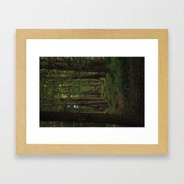 Summer Adventure Framed Art Print