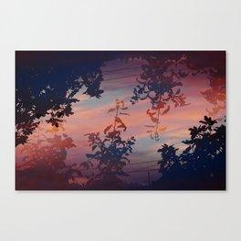 Flora at Dusk Canvas Print