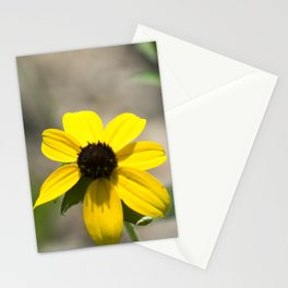 Longwood Gardens - Spring Series 232 Stationery Cards