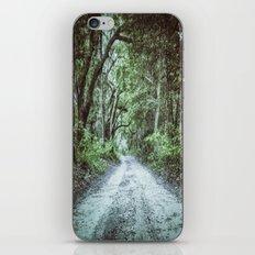 Endless Road iPhone & iPod Skin