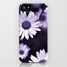 Daisy Wildflowers - Cheers iPhone Case