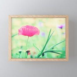Summer Poppy of Love Framed Mini Art Print