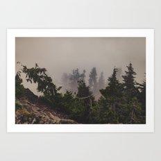Mountaintop Forest Art Print